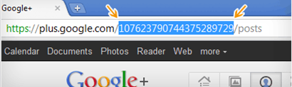 Google Plus profile URL example