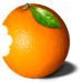 Wild Orange logo