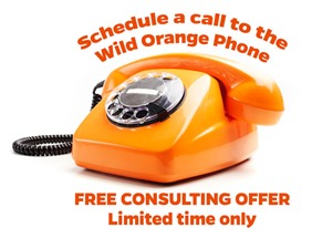Call-the-Wild-Orange-phone