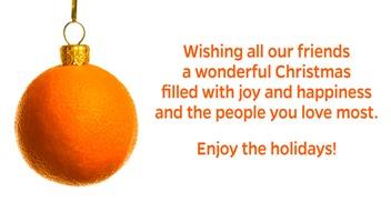 Wild-Orange-Media-Christmas-Wish